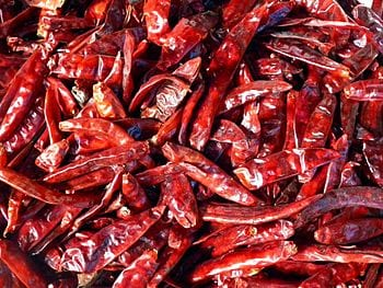 Chili pepper or Chile pepper (from Nahuatl chi...