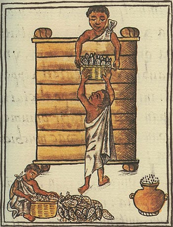Aztecs storing maize